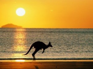 The Best State Government Grants for Australian Small Businesses 2